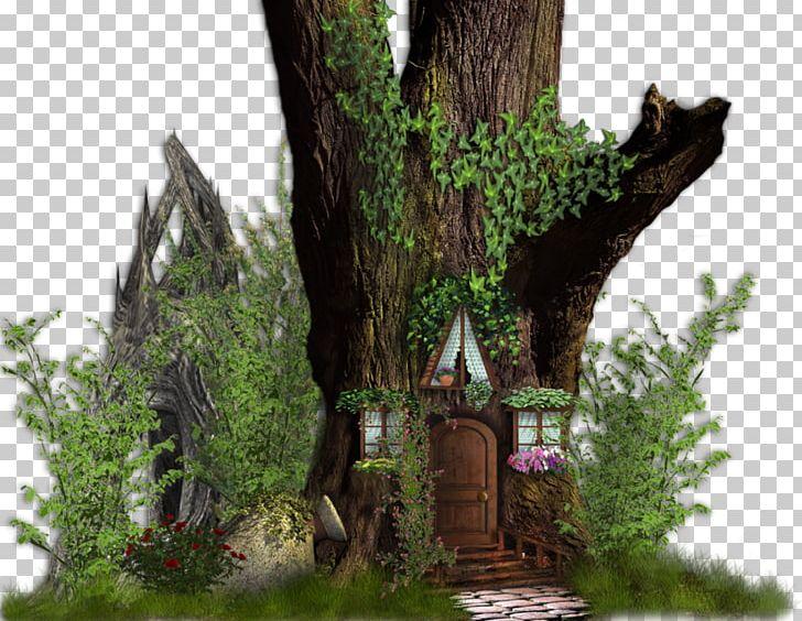 Tree House Desktop PNG, Clipart, Building, Desktop Wallpaper, Fairy, Fairy Tale, Forest Free PNG Download