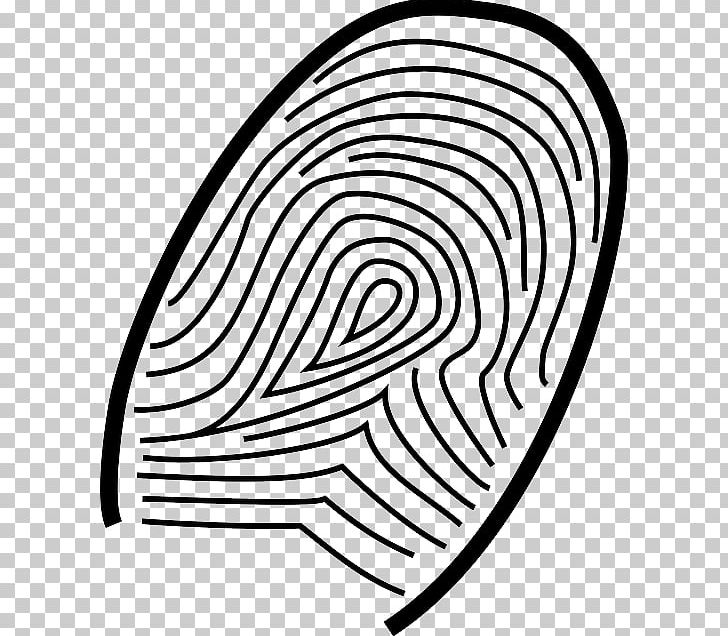 Fingerprint Coloring Book Live Scan PNG, Clipart, Area, Black And White, Circle, Color, Coloring Book Free PNG Download