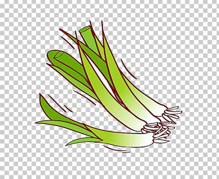 Garlic PNG, Clipart, Cartoon Garlic, Chili Garlic, Commodity, Download, Encapsulated Postscript Free PNG Download