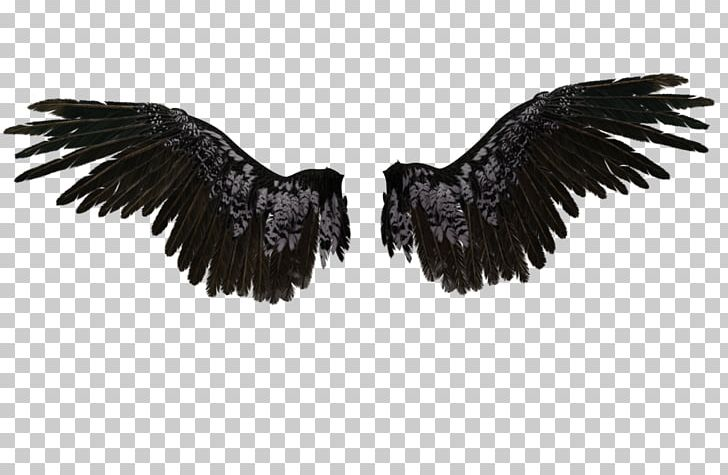 Castiel Drawing Wings Angel PNG, Clipart, Angel, Angel Angel, Angel Wings, Art, Beak Free PNG Download