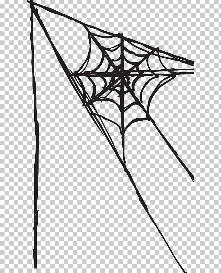 Spider Web PNG, Clipart, Angle, Area, Black, Black And White, Blo Free PNG Download