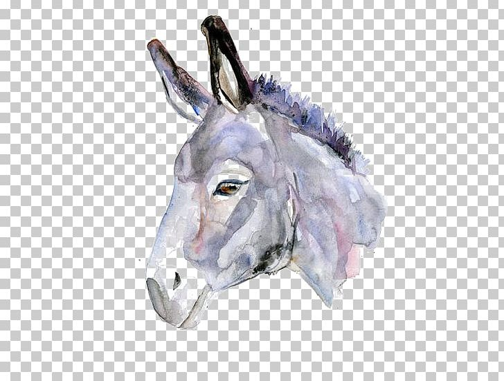 Donkeys In North America Watercolor Painting Drawing PNG, Clipart, Animal, Animals, Architectural Drawing, Art, Cartoon Free PNG Download