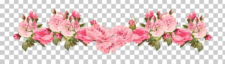Pink Flowers Rose PNG, Clipart, Blossom, Clip Art, Color, Cut Flowers, Desktop Wallpaper Free PNG Download