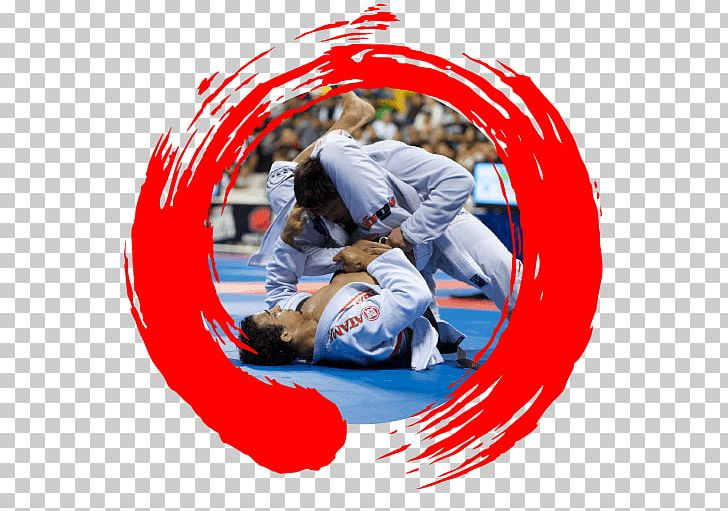 Grappling Martial Arts Ground Fighting