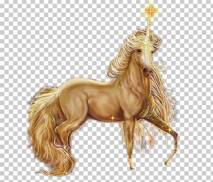 Unicorn Pegasus Horse Fairy Elf PNG, Clipart, Atlar, At Resimleri, Child, Elf, En Guzel At Free PNG Download