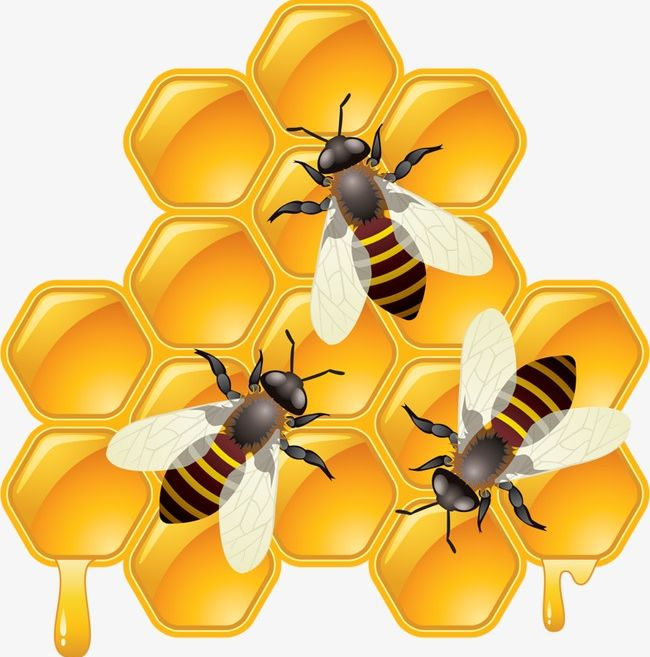 The Honey Bee Png Clipart Animal Bee Bee Clipart Bee Clipart Collecting Free Png Download Discover 1732 free bee png images with transparent backgrounds. the honey bee png clipart animal bee