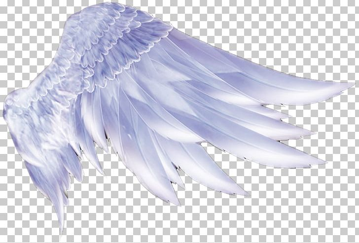 Wing Icon PNG, Clipart, Adobe Illustrator, Angel, Angels, Angel Wing, Angel Wings Free PNG Download