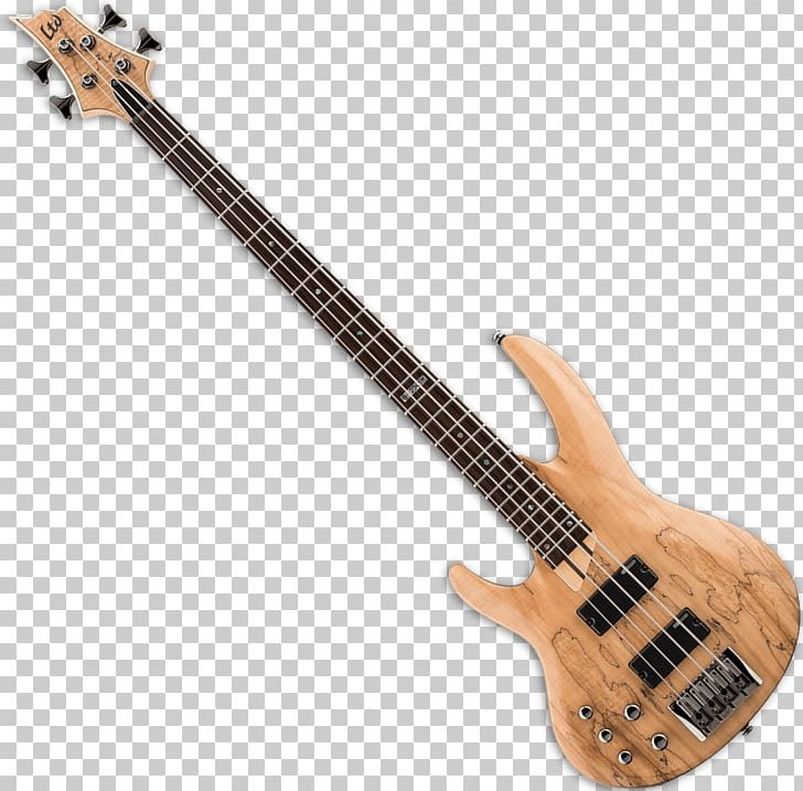 Bass Guitar Musical Instruments Cuatro ESP LTD B205SM PNG, Clipart, Acoustic Electric Guitar, Acousticelectric Guitar, Bass, Bassist, Double Bass Free PNG Download