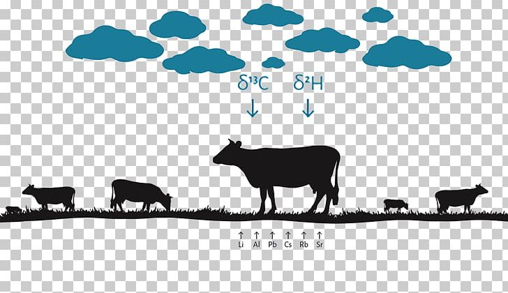 Cattle Sheep White Brand PNG, Clipart, Animals, Black And White, Brand, Cattle, Cattle Like Mammal Free PNG Download