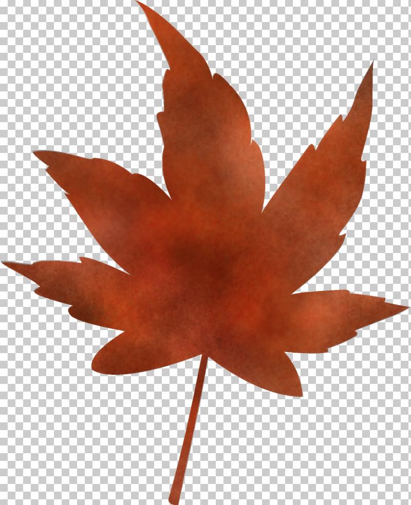 Maple Leaf Autumn Leaf Yellow Leaf PNG, Clipart, Autumn Leaf, Deciduous, Flower, Leaf, Maple Free PNG Download