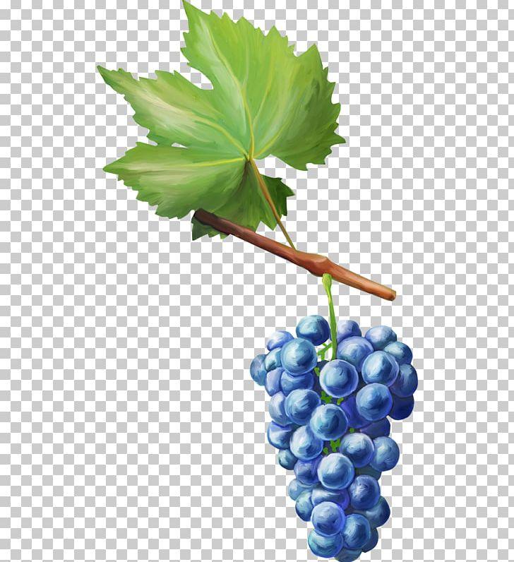 Grape Decoupage Fruit Auglis PNG, Clipart, Art, Auglis, Deco, Decoupage, Flowering Plant Free PNG Download