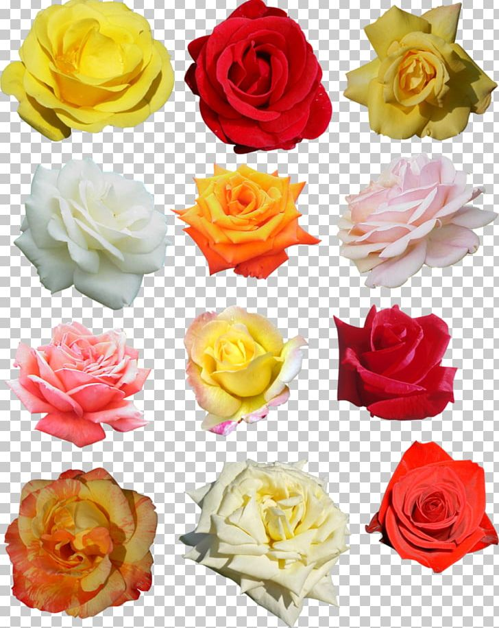 Rose Flower Wreath Crown Headband PNG, Clipart, Artificial Flower, Blossom, Crown, Cut Flowers, Floral Design Free PNG Download