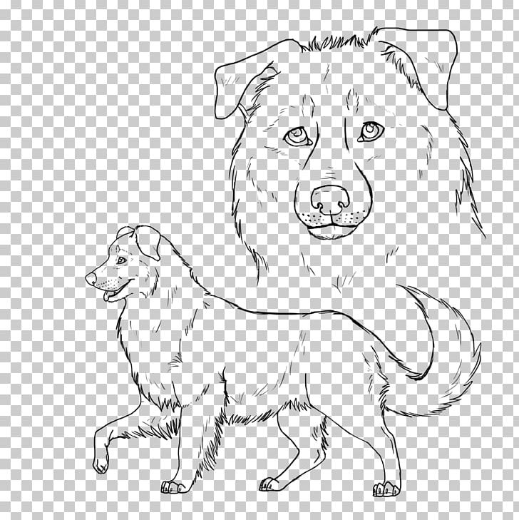 Image result for australian shepherd coloring pages   Mini ...   729x728
