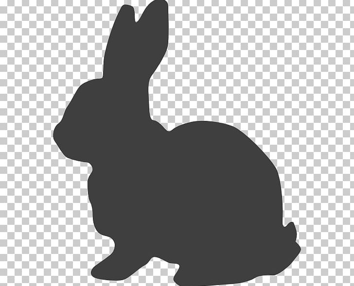 Hare Easter Bunny White Rabbit Graphics PNG, Clipart, Animals, Black, Carnivoran, Dog Like Mammal, Domes Free PNG Download