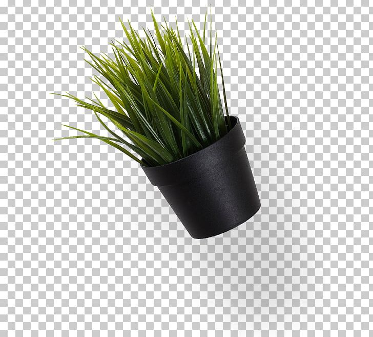 Shopping Centre Park Business Playground PNG, Clipart, Blog, Business, Car Park, Flowerpot, Grass Free PNG Download