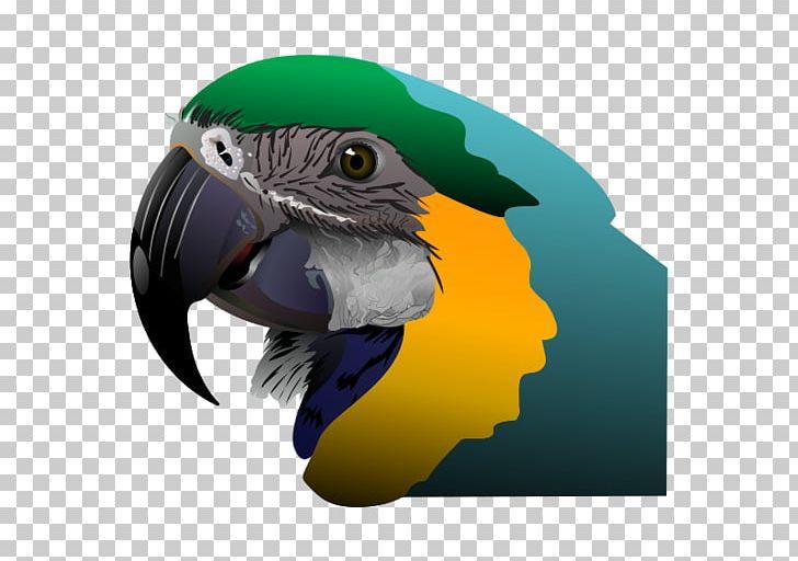 Parrot PNG, Clipart, Animals, Beak, Bird, Download, Macaw Free PNG Download