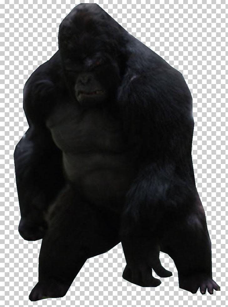 Gorilla Grodd Western Gorilla Common Chimpanzee Ape Killer Frost PNG, Clipart, Ape, Chimpanzee, Comic, Common Chimpanzee, Darkseid Free PNG Download