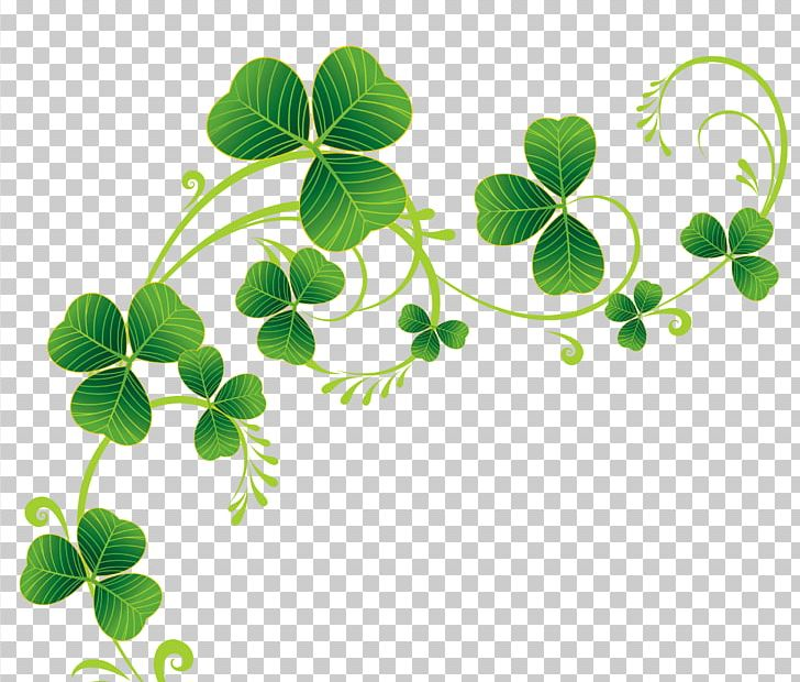 Ireland Saint Patrick's Day March 17 Shamrock Four-leaf Clover PNG, Clipart, Branch, Campsite, Catholicism, Culture Of Ireland, Do It Yourself Free PNG Download