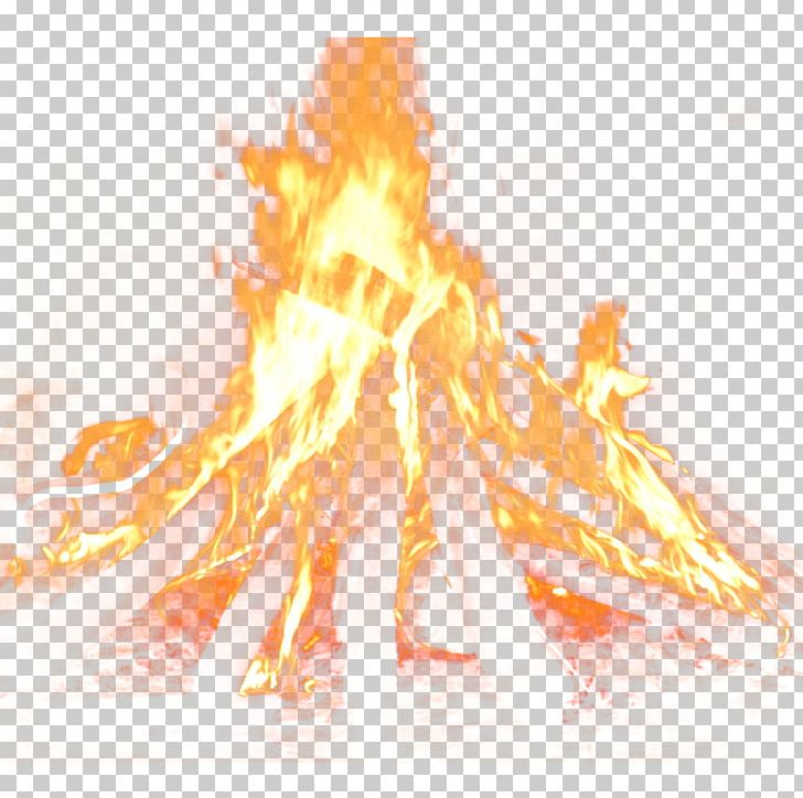 Chambal Garden Fire Flame PNG, Clipart, Bonfire, Cartoon, Chambal, Chambal Garden, Combustion Free PNG Download