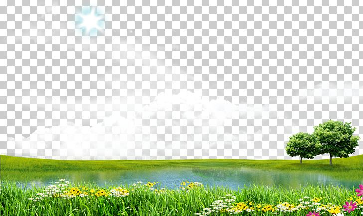 Icon PNG, Clipart, Blue, Blue Sky, Chrysan, Computer Wallpaper, Flower Free PNG Download