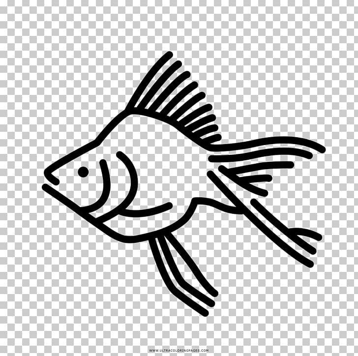 Goldfish Coloring Book Drawing Aquarium Png Clipart Anglerfish Animals Aquarium Art Artwork Free Png Download