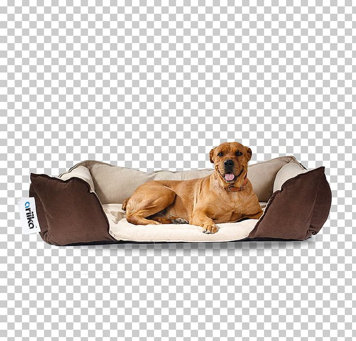 Awesome Companion Dog Puppy Bean Bag Chairs Png Clipart Animals Customarchery Wood Chair Design Ideas Customarcherynet