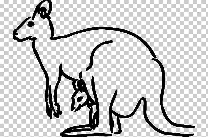 Kangaroo Coloring Book PNG, Clipart, Black And White, Boxing Kangaroo, Carnivoran, Cat, Cat Like Mammal Free PNG Download