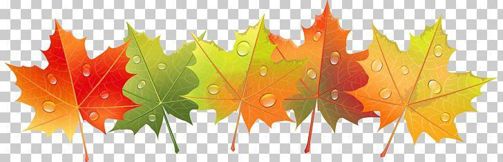 Dew PNG, Clipart, Autumn, Autumn Leaf Color, Autumn Leaves, Blog, Clip Art Free PNG Download