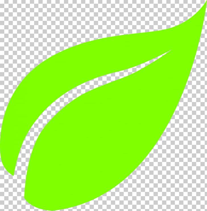 Hd green tea leaves, green, leaves png | PNGEgg