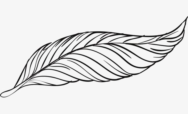Beautiful Peacock Feather Artwork PNG, Clipart, Animal, Artwork, Artwork Clipart, Beautiful, Beautiful Clipart Free PNG Download