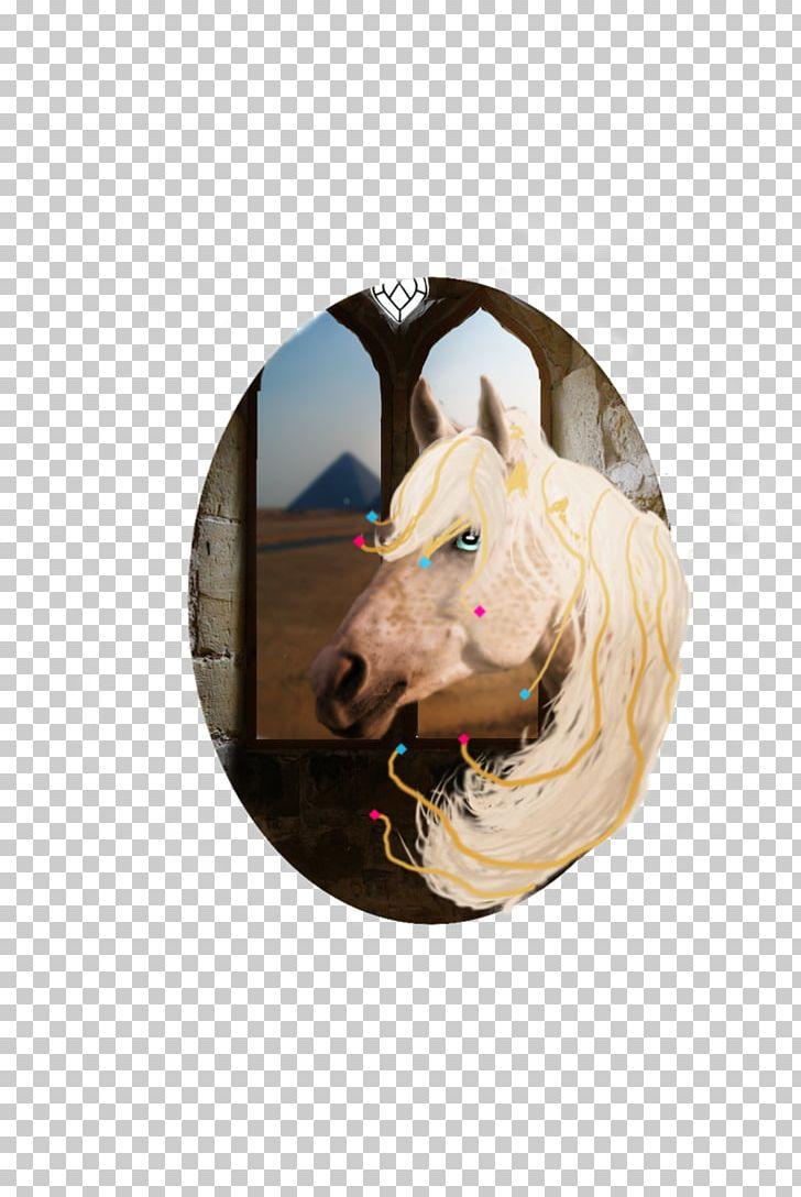 Halter Mustang Bridle Rein Freikörperkultur PNG, Clipart, Bridle, Halter, Horse, Horse Like Mammal, Horse Supplies Free PNG Download