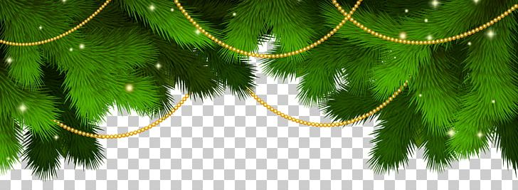 Nutcracker Christmas Tree Clipart.The Nutcracker And The Mouse King Ballet Dance Choreography