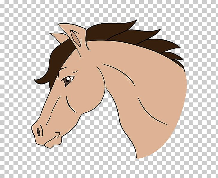 Mustang Cob How To Draw A Horse Drawing Sketch PNG, Clipart