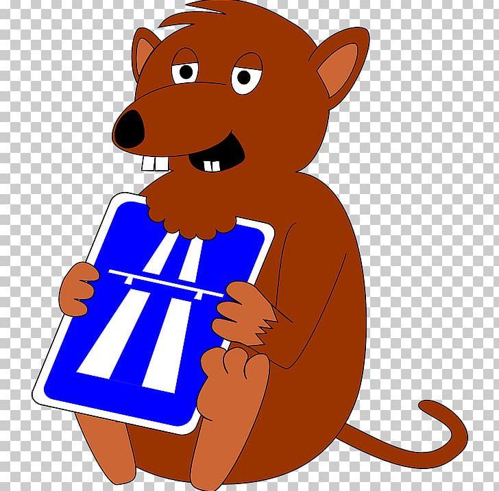 Mammal Food Cat Like Mammal PNG, Clipart, Area, Artwork, Carnivoran, Cartoon, Cat Like Mammal Free PNG Download