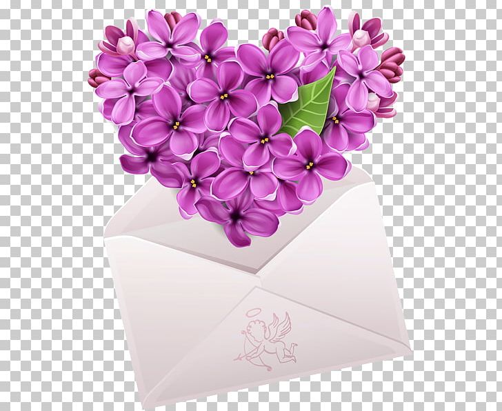 Common Lilac Flower Photography PNG, Clipart, Common Lilac