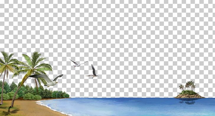 Beach Business Card Png Clipart Angle Background Vector