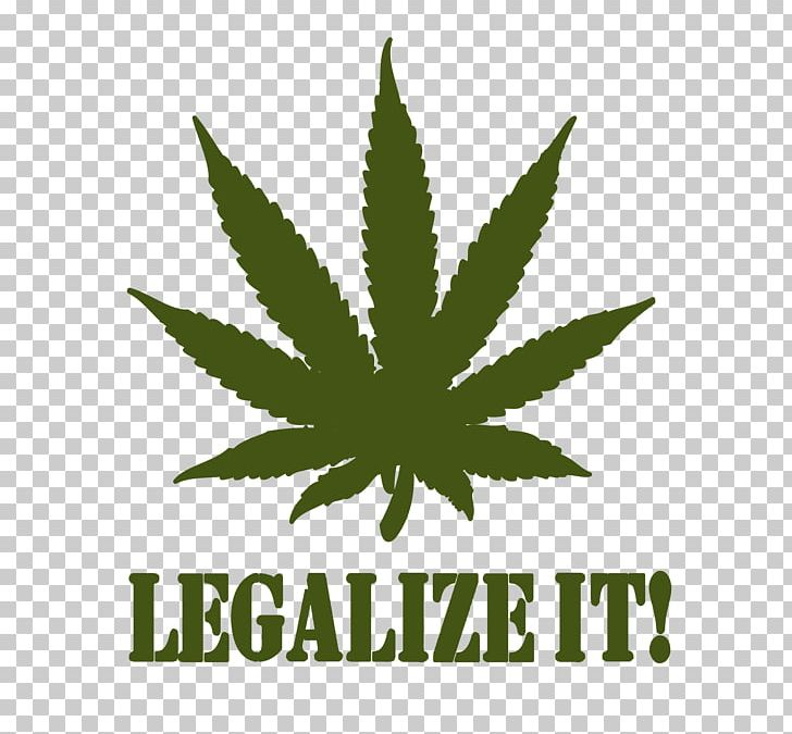 Medical Cannabis Leaf Drawing PNG