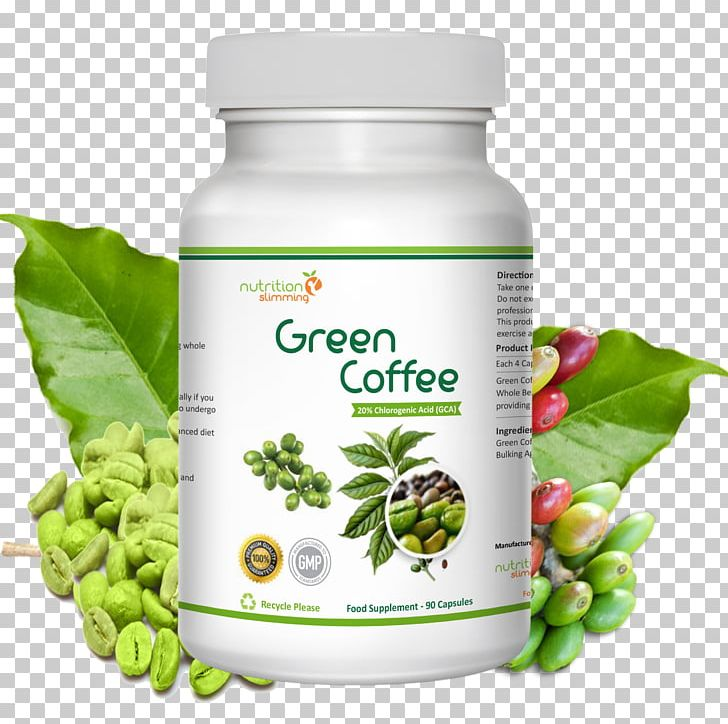 Green Coffee Extract Dietary Supplement Weight Loss Coffee Bean