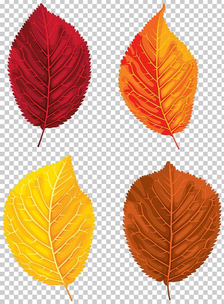 Santa Claus Autumn Leaf Color PNG, Clipart, Autumn, Autumn Leaf Color, Clip Art, Clipart, Fall Free PNG Download