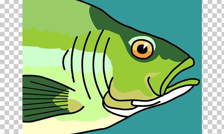 Fish Gill PNG, Clipart, Art, Artwork, Beak, Bird, Bluegill Free PNG Download