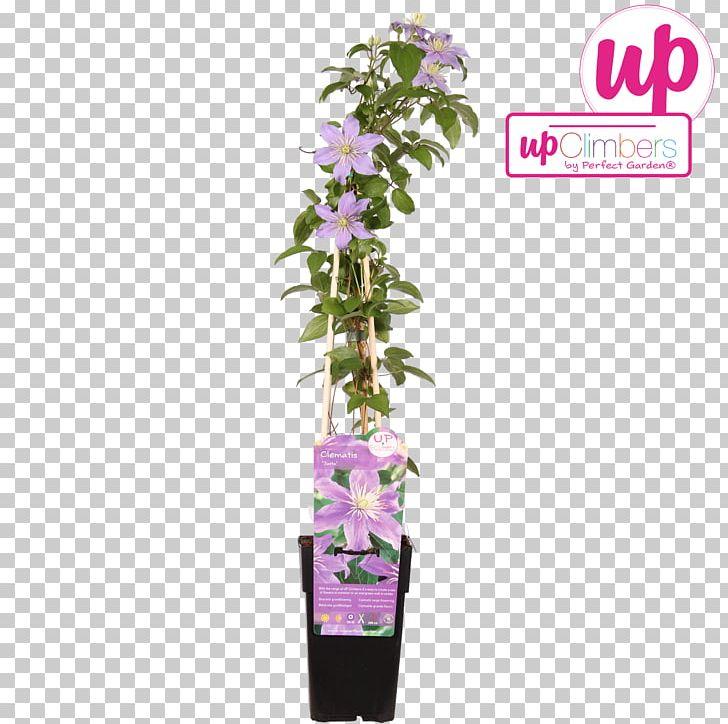 Flowerpot Old Man's Beard PNG, Clipart, Flower, Flowerpot Free PNG Download