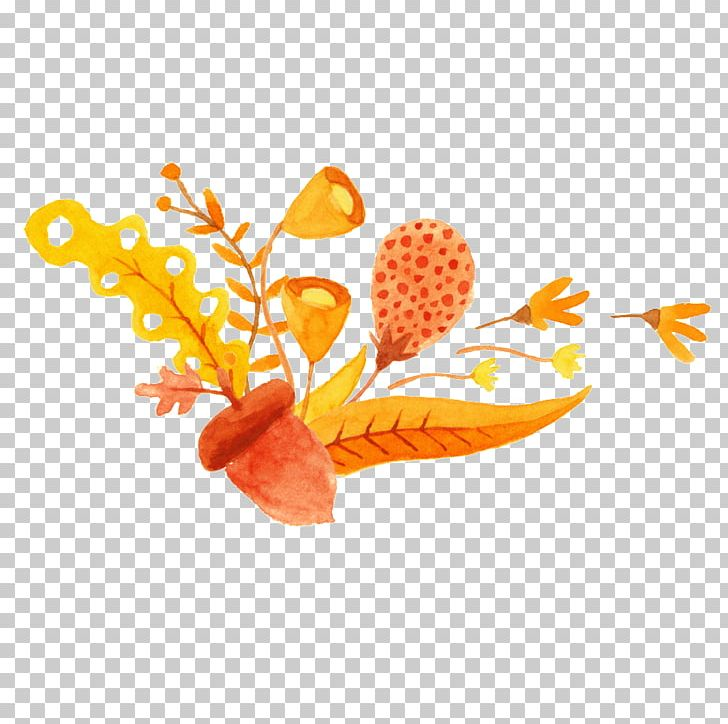 Watercolor: Flowers Orange Watercolor Painting Illustration PNG, Clipart, Art, Cartoon, Decorative, Decorative Pattern, Download Free PNG Download