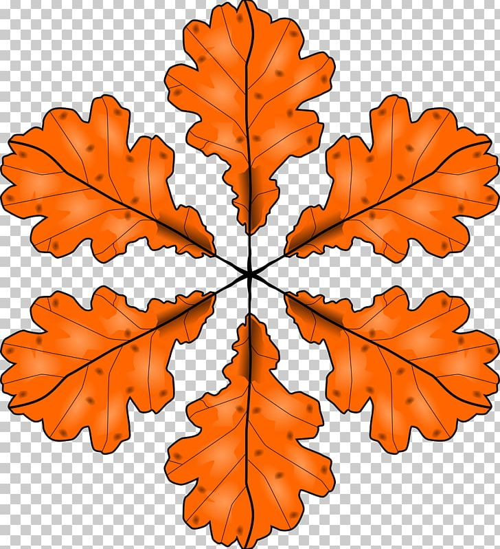 Autumn Leaf Color Maple Leaf PNG, Clipart, Autumn, Autumn Leaf Color, Autumn Leaves, Branch, Drawing Free PNG Download