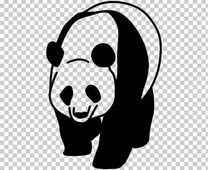 Giant Panda Desktop Png Clipart Black Black And