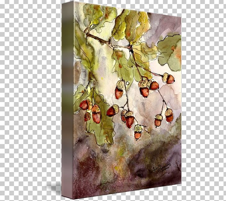 Watercolor Painting Acorn Oak Leaf PNG, Clipart, Acorn, Acrylic Paint, Art, Artist, Artist Trading Cards Free PNG Download