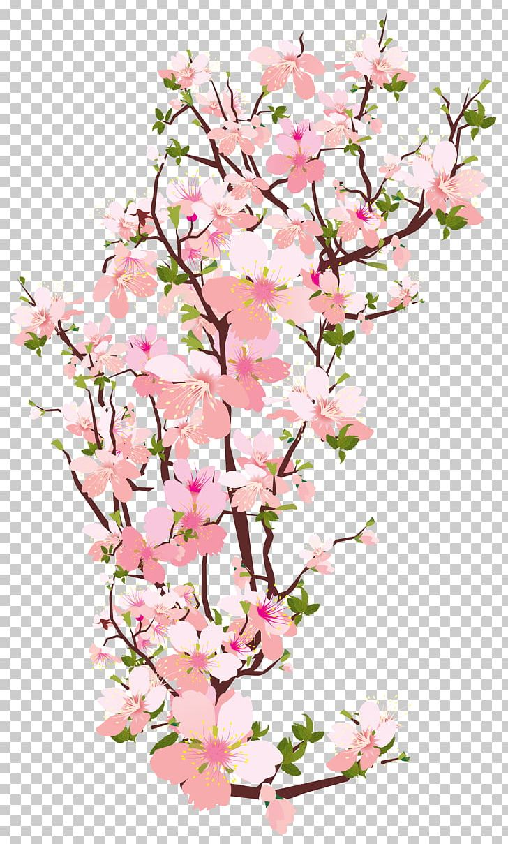 Branch Tree Cherry Blossom PNG, Clipart, Blossom, Branch ...