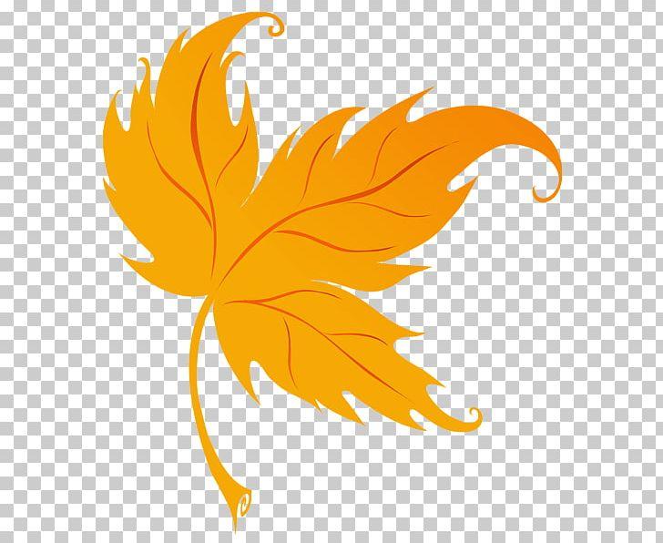 Leaf Autumn PNG, Clipart, Akiba, Autumn, Autumn Leaf Color, Autumn Leaves, Beak Free PNG Download