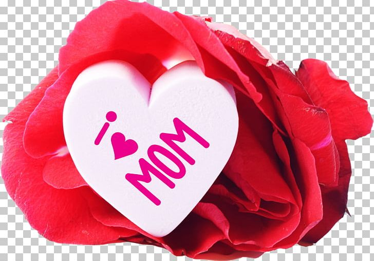 Mother's Day Message Father's Day Gift PNG, Clipart, Banquet, Child, Cut Flowers, Fathers Day, Garden Roses Free PNG Download