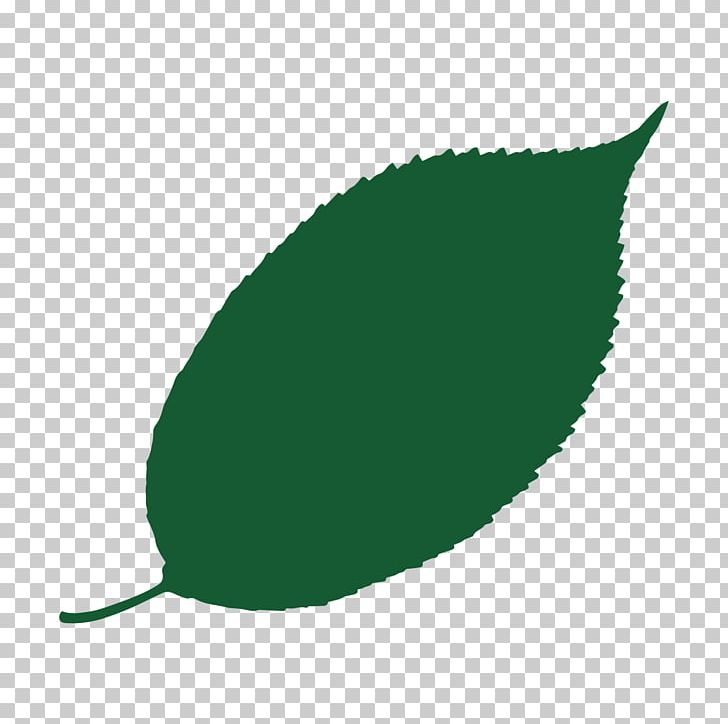 Temperate Broadleaf And Mixed Forest Heart Of England Forest Silver Maple Tree PNG, Clipart, Antic, Birch, Broadleaved Tree, Bud, Deep Red Free PNG Download