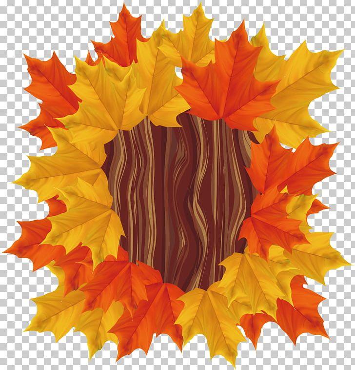 Maple Leaf PNG, Clipart, Adobe Illustrator, Autumn, Autumn, Autumn Leaves, Autumn Maple Leaves Free PNG Download
